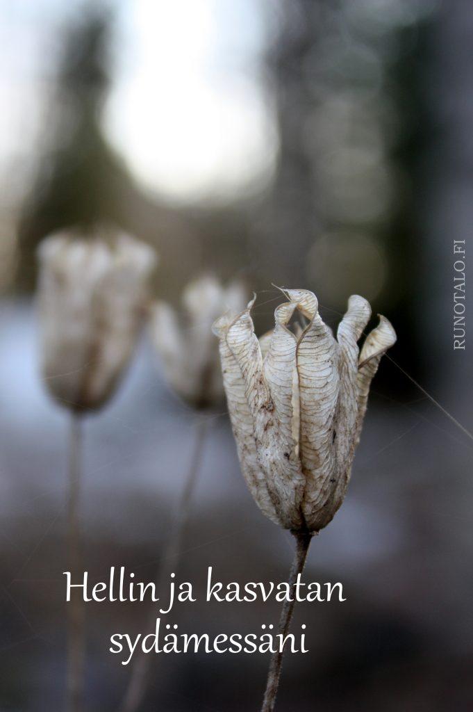 Hellin ja kasvatan sydämessäni voimakortti - Runotalo