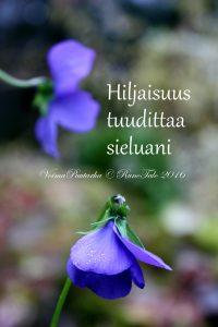 Runotalon voimakortti Hiljaisuus tuudittaa sieluani