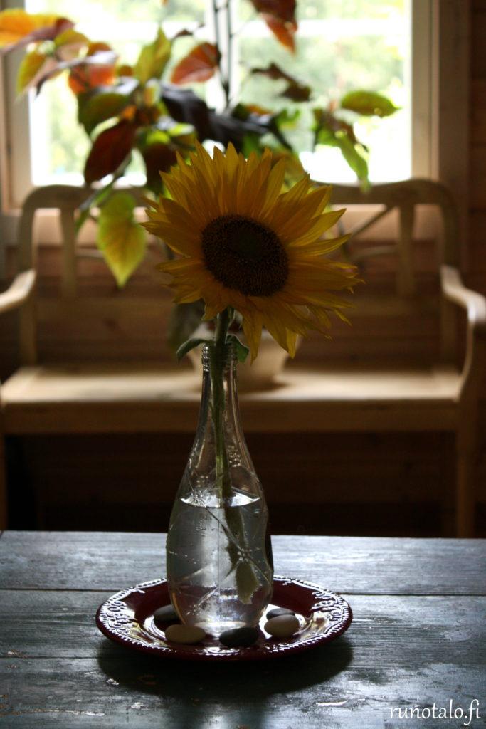 auringonkukka ja enkelinsiipi runotalon keittiössä