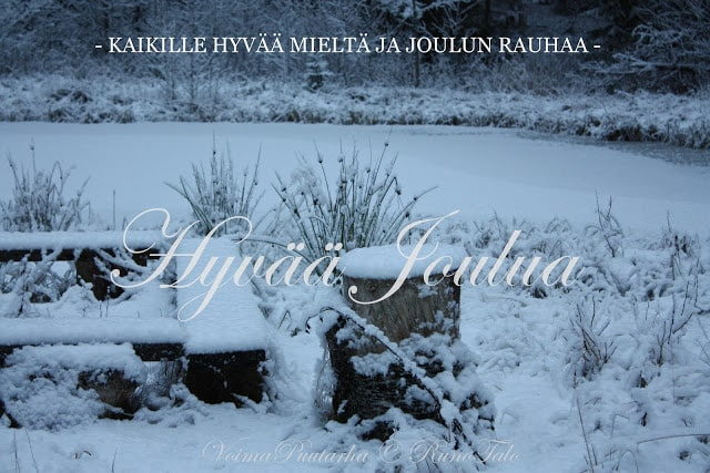 Hyvää joulua Runotalon voimametsän lammelta