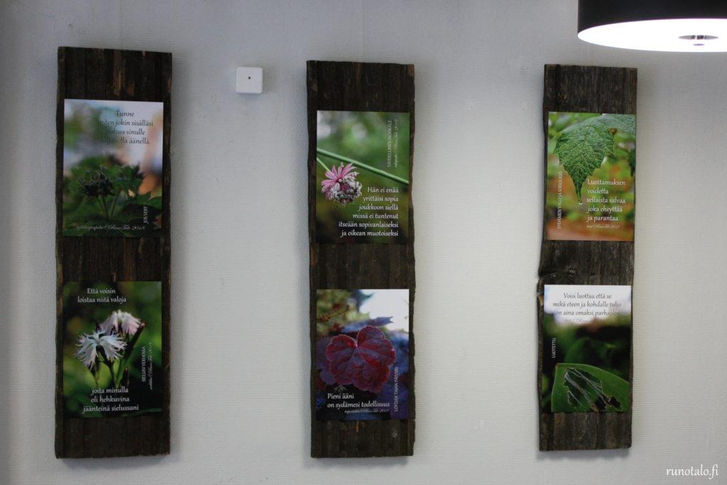 Runotalon Voimarunopolku näyttely Ekokampaamo Oranssissa 2019