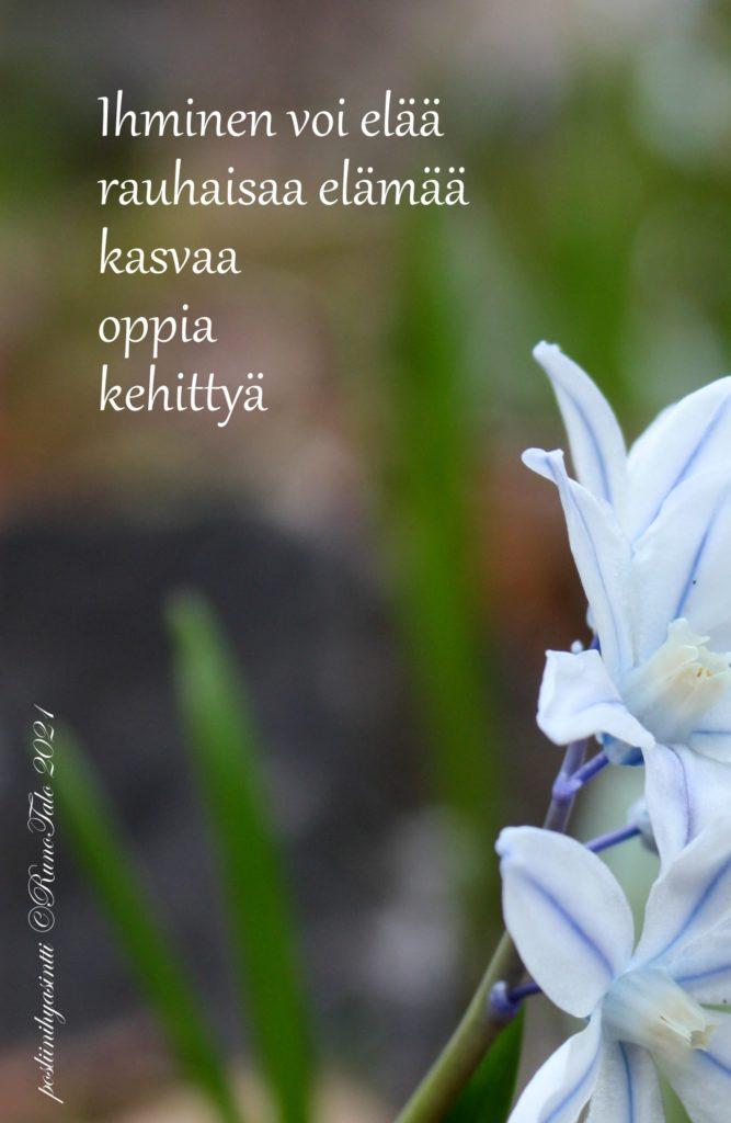 voimakortti Ihminen voi elää rauhaisaa elämää kasvaa oppia kehittyä