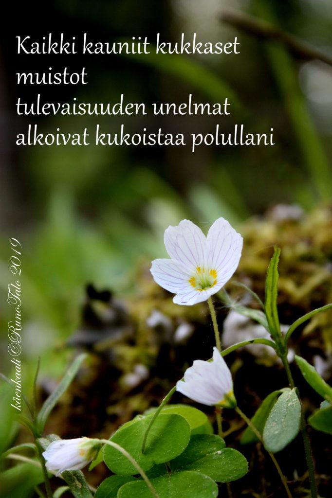 voimakortti Kaikki kauniit kukkaset