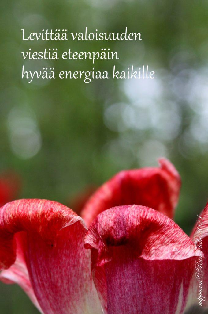 voimakortti Levittää valoisuuden viestiä eteenpäin hyvää energiaa kaikille
