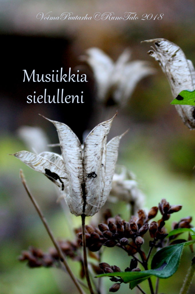 voimakortti Musiikkia sielulleni