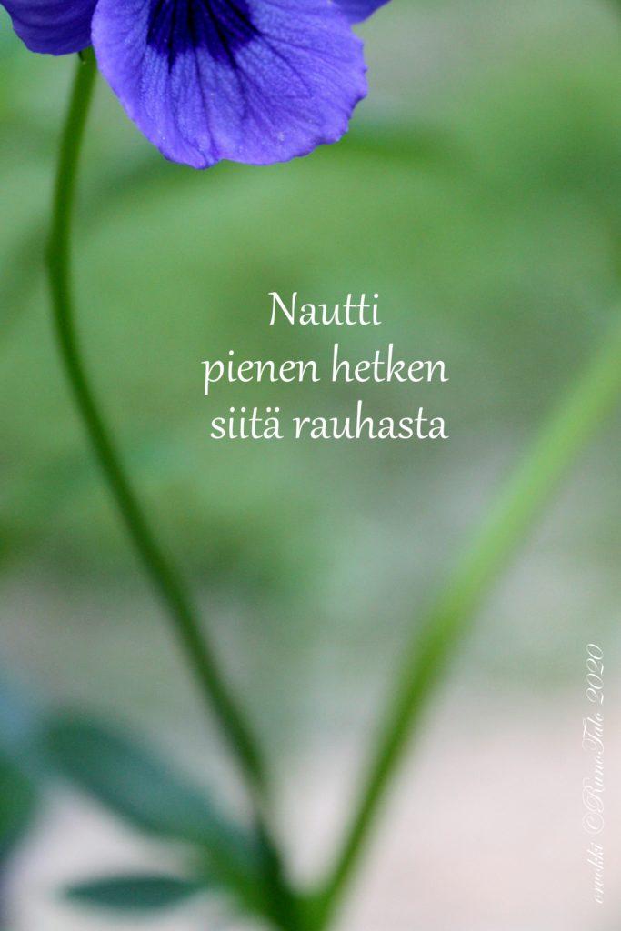 voimakortti Nautti pienen hetken siitä rauhasta
