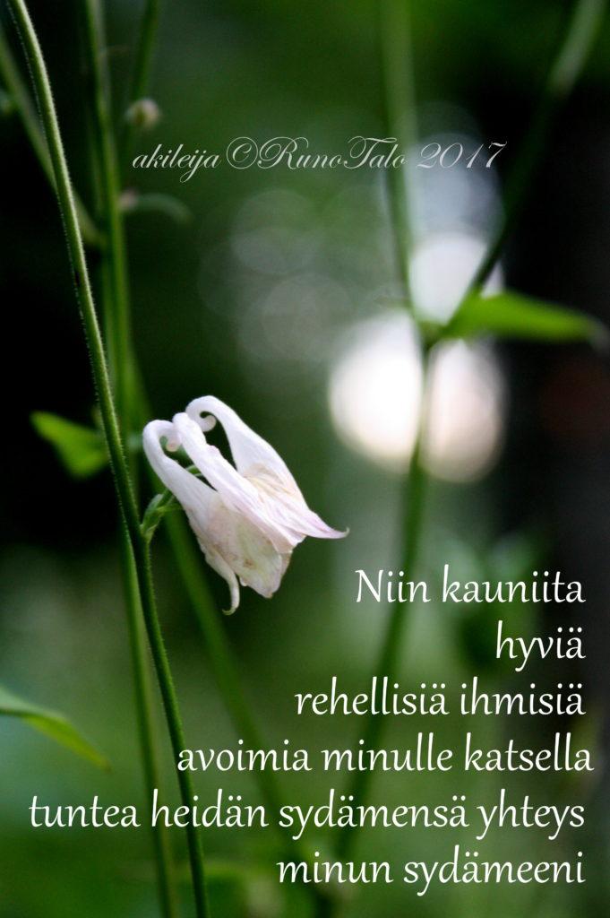 Runotalon voimakortti Niin kauniita hyviä rehellisiä ihmisiä